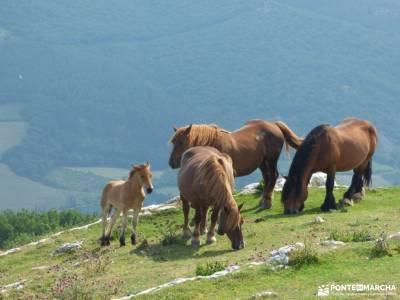 Urbasa-Andía;Aizkorri-Aratz;Aralar; sierra de guadarrama madrid duques de alburquerque club escalad